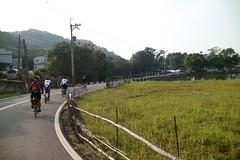 關西竹 16-1 鄉道.這邊好多水塘 (nk@flickr) Tags: 關西 kevin bobby taiwan 新竹 friend cycling 台湾 cheven 20161105 台灣 guanxi hsinchu 阿強 canonefm22mmf2stm