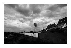 Le courgant (Punkrocker*) Tags: contax aria cy zeiss distagon 28mm 2828 t film kodak trix 400 nb bwfp clouds nuages tree arbre lecouregant ploemeur lorient morbihan bretagne brittany france