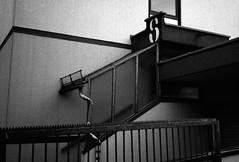 8 (Some More Sundays) Tags: blackwhite schwarzweiss analog analogue 35mm filmphotography push sureal silence ilfordhp5 kodakhc110 olympusxa2