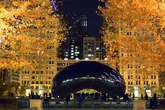 November In Chicago (samurai66) Tags: millenniumpark chicago illinois autumn fall cloudgate thebean