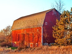 The H. C. Hoffman Barn (nelhiebelv) Tags: hoffman barn lansing airportroad autumn