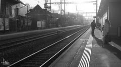 Urban Selection (Ukelens) Tags: ukelens schweiz swiss switzerland suisse svizzera schwarzundweiss schwarzweiss blackandwhite urban street streetphotography rails railway lighttrails geleise licht lichter lichteffekt lichteffekte lightroom light lights lighteffects lighteffect shadow shadows contrast kontrast
