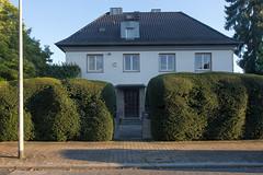 o.T. (Neue Eule) Tags: frankfurtammain hecke tor eingang germany architektur