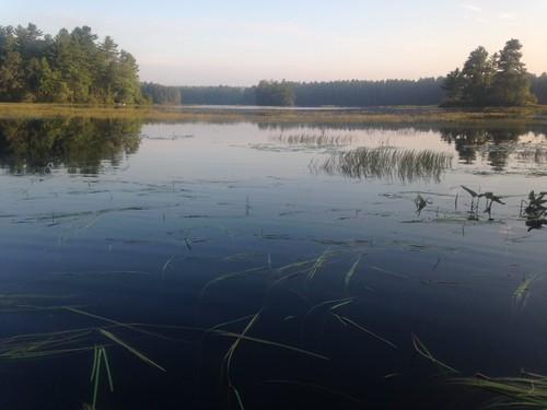 Lower Range Pond - www.amazingfishametric.com