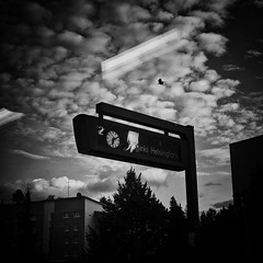bird (s_inagaki) Tags: bird train window reflection clock finland snap blackandwhite bnw bw