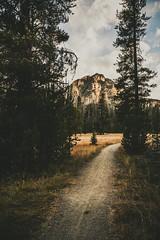 trail to mcgown (R A M A L A M ▲ S A M D O N G) Tags: