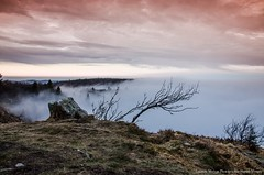 mer de brume (Manonlemagnion) Tags: paysages nature montagne brume merdebrouillard hohneck lumire coucherdusoleil sunset nikond7000 1685mm