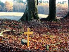 Bruchsaler Hgelland im November (infactoweb) Tags: bruchsal eichelberg obergrombach kraichgau hgel hgelland wandern infactoweb