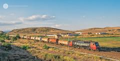 The unexpected tanker (cossie*bossie) Tags: bulmarket 86001 86 001 ea3000 dsb bdz bulgaria bulgarian railways private operator tanker train freight balgarovo burgas electric locomotive traction scandia abb