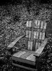 Chair in the Woods (nsandin88) Tags: chair kodaktmax ishootfilm tylerarboretum standdevelopment exploration kodakektar rustic tyler film developedathome tmax100 trees tree retina filmisnotdead tmax outdoors kodakretina rodinal pennsylvania blackandwhite pa bandw retinaiiic arboretum kodak