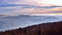 Berge und Wlder (Smo42) Tags: nebel dunst sonya77ii sal1650 schsischeschweiz bhmischeschweiz wald baum sonne