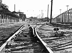 Two different ways (Raul Val) Tags: bw white black train trails pb paths trem caminho trilho
