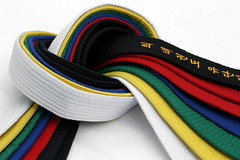 Martial Arts Belts 3 (Metro Taekwondo Studio) Tags: blue red judo white black color colour green art texture sports colors sport yellow promotion japan asian gold golden design costume belt fight intense rainbow colorful colours order exercise symbol martialart martial ninja background character culture belts martialarts korea taekwondo karate korean tip level kungfu material strength colourful aikido language calligraphy oriental combat selfdefense levels degree stepbystep degrees steadiness selfconfidence overwhite