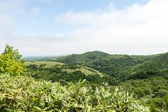8 (GenJapan1986) Tags: travel sea japan landscape island hokkaido      25mm   2013 nikond600 zf2 rebunisland  distagont225 8