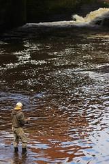 Living in hope (Impact Imagz) Tags: scotland glasgow rivers flyfishing weir anglers salmonfishing angling riverkelvin salmonrivers