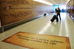 Where Fantasy Comes to Life (sarahthehobbit) Tags: new travel adventure auckland lotr zealand middleearth thehobbit