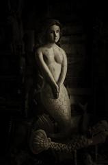 Mermaids for Sale (photographyguy) Tags: florida mermaids antiques destin