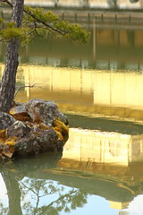 golden pavilion (Little Raven) Tags: nature japan garden temple golden kyoto asia buddhism zen 京都 日本 nippon kansai 金閣寺 buddist kinkakuji nihon kinkaku goldenpavilion rokuonji 鹿苑寺 templeofthegoldenpavilion 関西地方