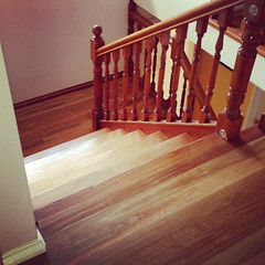 SPOTTED GUM STAIRCASE (Timber Floors Pty Ltd) Tags: wood stairs floors floor timber steps staircase choices flooring floorboards hardwoodfloor hardwood woodfloors tng hardwoods treads woodenfloors timberwood hardwoodflooring timberflooring floorinstaller flooringchoices timberfloors timberfloor solidwoodfloors australiantimber timberfloorboards timberfloorssydney sydneyflooring floorlayer flooringsydney hardwoodtimber timberflooringsydney timberfloorsydney hardwoodtimberfloors uniquefloors thesolidwoodflooringcompany staircasestairsstaircases flooringhardwoodstimber stepstreadswood floorsfloor sydneyhardwoodchoicechoicesuniquewoodenaustralian floorswooden floorsflooring floorstngsolid floorsreal floorssydney floorssmithfield flooringfloor layerfloor installerfloorboards realtimberfloors sydneyfloors smithfieldflooring flooringunique
