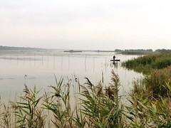 30.10.2013 (gzammarchi) Tags: lago persona barca italia natura paesaggio canna ravenna pineta pianura marinaromea camminata capanno itinerario