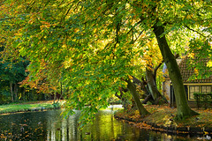 Autumn light and colors (BraCom (Bram)) Tags: autumn trees holland fall window canon reflections duck bomen herfst cottage nederland thenetherlands moat huisje eend raam zuidholland rhoon spiegeling southholland slotgracht canonef24105mm kasteelrhoon rhooncastle bracom canoneos5dmkiii