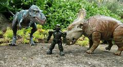 Go Back > Gallery For > Pachyrhinosaurus Vs Gorgosaurus Walking With Dinosaurs Edmontonia