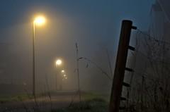 Die Strasse (N.Sample) Tags: dusty clouds dark nebel rainy mnster munster