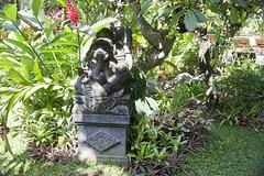 Jamie and Dawn's Big Adventure (Sunrise Calls) Tags: bali garden ganesh candidasa ramashintahotel