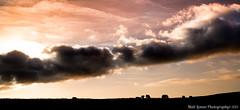 Grazing Shadows (Matthew Lomas Photography) Tags: red sky orange sun silhouette clouds canon cattle cows peakdistrict canon5d grazing mlp mamtor castleton llens 24105mm cs6 lr5 5dmkiii 5dmk3 5d3