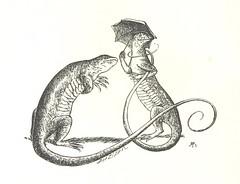 Anglų lietuvių žodynas. Žodis worm lizard reiškia kirminas driežas lietuviškai.