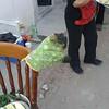 Daños colaterales..en una carnita asada (MIGUEL CENTENO SILVA) Tags: sonora guaymas opus dei pri amorc cajeme rosacruz