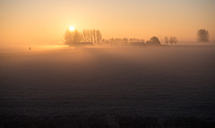 _DSC5632.jpg (Ingeborg Ruyken) Tags: morning autumn trees sky sun mist ice fog sunrise dawn haze nevel bomen frost december farm herfst meadow freezing lucht polder zon risingsun weiland ochtend ijs boerderij vorst zonsopkomst kruisstraat natuurfotografie vriezen 2013 opkomendezon catsunriselandscape catfogandmist