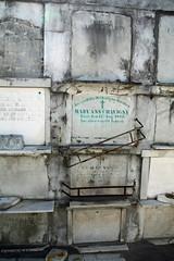 St Vincent de Paul Cem Wall vaults