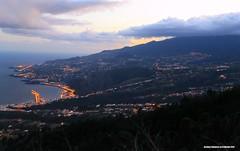 18-02.2012 195 (www.palmerosenelmundo.com) Tags: 18022012