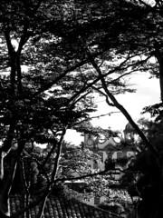 Tiradentes (Gustavo Racca) Tags: street blackandwhite bw blackwhite streetphotography tiradentes streetphoto blacknwhite bnw streetphotos streetphotographs streetphotograph