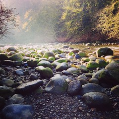 Seymour River (troutwerks) Tags: uploaded:by=flickrmobile flickriosapp:filter=nofilter