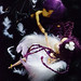I ♥ PullipCon - I won't let you fall