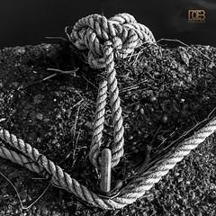 Rope Anchor (@CubePhotos) Tags: uk sea blackandwhite texture rock metal port photoshop 35mm coast scotland blackwhite nikon harbour britain 5 debris scottish rope coastal adobe anchor mooring rough lightroom ayrshire dunure d60 southayrshire f18g