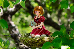 The babysitter (Hurry Up Miss Jane) Tags: bird for miniature doll nest time nursery off fairy eggs babysitting babysitter mrs pure takara tale diorama rhyme gentle neemo incubate meilin