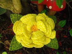 PESO DE PORTA FLOR! (Lucimar Lima) Tags: de flor porta patchwork peso tecido