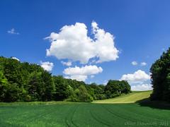 P5190469-3_1600px (Oliver Deisenroth) Tags: nature landscape natur landschaft
