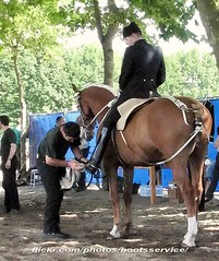 bootsservice 10 7953 1 (bootsservice) Tags: horses horse army cheval spurs uniform boots military traditions gloves cavalier uniforms rider officer cavalry militaire bottes carrousel riders arme chevaux uniforme officers cavaliers saumur breeches anjou cavalerie uniformes gants officier riding boots eperons