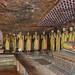 Dambulla - Standing Buddhas
