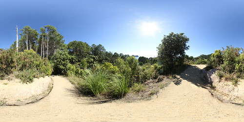 Cathedral Cove Walkway - Panorama
