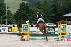 DSC04908_s (AndiP66) Tags: horse macro sports sport schweiz switzerland jumping sony july luzern sp di if juli alpha tamron concours pferd equestrian f28 solothurn ld horsejumping 70200mm wettbewerb 2014 springen kantonsolothurn balsthal springreiten cantonsolothurn wolhusen andreaspeters pferdespringen grueb martinameyer 77m2 a77ii ilca77m2 77ii 77markii slta77ii