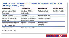 61MD27_1 (sportEX journals) Tags: ultrasound sportex sportsinjury rehabilitiation sportstherapy sportexmedicine tendinopathy