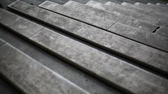 Tribne (Adam Haranghy) Tags: abstract nature water canon eos wasser patterns natur structures structure 5d holz muster bunt umgebung farben abstrakt steg ruder erde strukturen elemente ruderregatta 5dmarkiii