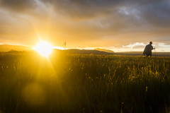 DSC_5851 (sergeysemendyaev) Tags: 2016 brazil bahia lenis chapadadiamantina nationalpark      adventure   hiking valley  valedocapao  palmeiras  nature natural   landscape scenery  yellow gold    sunset dusk sun       amazing beautiful beauty marvelous miracle miraculous unforgettable