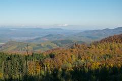 DSC_0316 (Pter_Szab) Tags: mtra matra hungary nature autumn colours mountains galyateto galyatet forest hiking nationalpark landscape