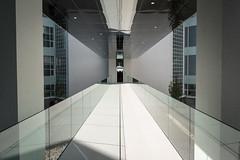 QDMP-160934-VB08 (KanteTelemaque) Tags: valbenoit geniecivil liege spi verre metal beton